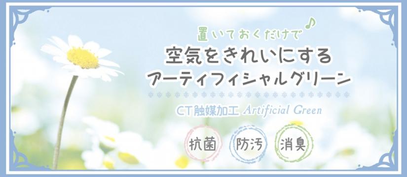ct_top2b