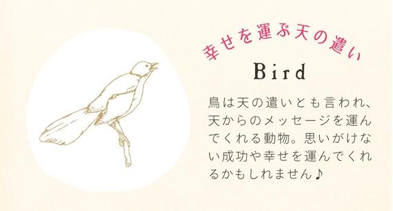 popup_bird