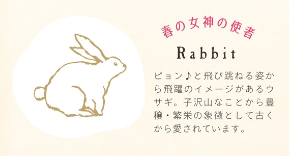 popup_rabbit